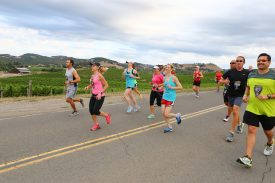 Napa to Sonoma Wine Country Half Marathon Celebrates 15th Year