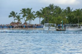 "Virgin Islands' Triathlon Announces Winners of ""Fly, Stay and Race for Free"" Sweepstakes"